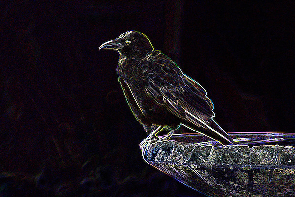 Midnight Raven and messages