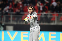 Salvatore SIRIGU  ( Paris Saint-Germain )  .Football Calcio 2012/2013.Ligue 1 Francia.Foto Panoramic / Insidefoto .ITALY ONLY