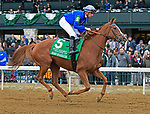 October 13, 2018 : Mission Impassible (IRE), ridden by Florent Geroux, finished 2nd in the Queen Elizabeth II Challenge Cup presented by Lane's End at Keeneland on October 13, 2018 in Lexington, KY. Jessica Morgan/ESW/CSM