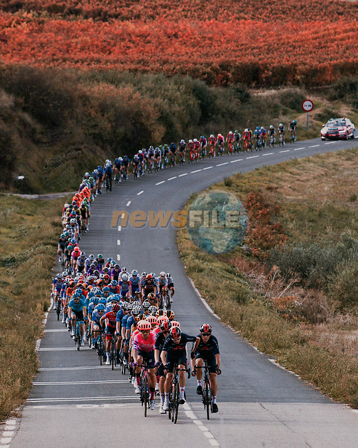 The peloton led by Chris Froome (GBR) Ineos Grenadiers during Stage 8 of the Vuelta Espana 2020 running 160km from Logroño to Alto de Moncalvillo, Spain. 28th October 2020. <br /> Picture: Unipublic/BaixauliStudio | Cyclefile<br /> <br /> All photos usage must carry mandatory copyright credit (© Cyclefile | Unipublic/BaixauliStudio)