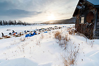 Teams rest on the slough as the sun peaks from the clouds at the Iditarod checkpoint on Friday, March 9th during the 2018 Iditarod Sled Dog Race -- Alaska<br /> <br /> Photo by Jeff Schultz/SchultzPhoto.com  (C) 2018  ALL RIGHTS RESERVED