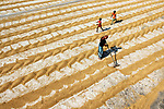 Rice left out to dry by Dibakar Roy