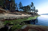 Seaweed Covered Rocky Shoreline on Galiano Island, in the Southern Gulf Islands, British Columbia, Canada