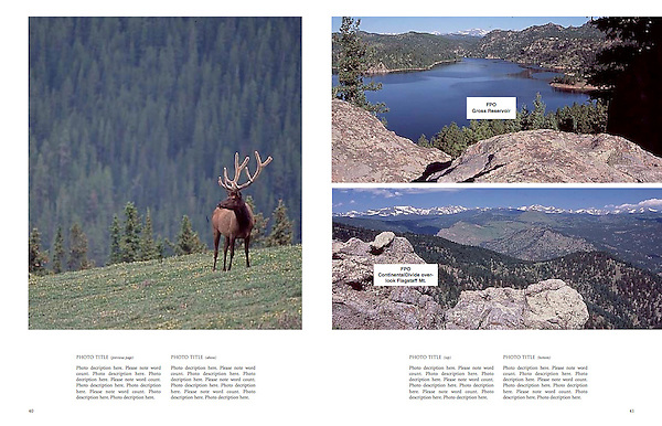 """Private wildlife photo tours by John.<br /> Photos from John's 4th book: """"Boulder, Colorado: A Photographic Portrait."""""""