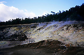 Big Island, Hawaii. Sulphuric gases rising from Sulphur Banks stained yellow by sulphur in Volcanoes National Park.