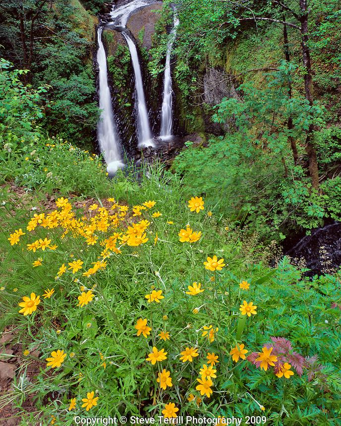 Triple Falls in Columbia River Gorge National Scenic Area, Oregon