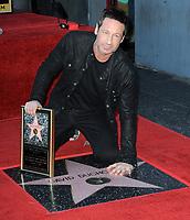David Duchovny Star