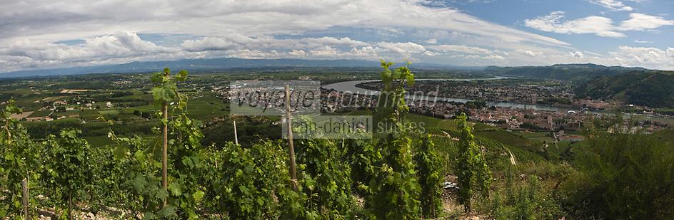 Europe/France/Rhône-Alpes/26/Drôme/Tain-L'Hermitage: le vignoble de Tain l'Hermitage AOC Hermitage et AOC Crozes-Hermitage et la vallée du Rhone