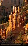 Fairyland Castle at Sunrise, Fairyland Canyon, Bryce Canyon National Park, Utah