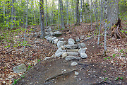Stone steps along the Mt Tecumseh Trail in Waterville Valley, New Hampshire in May 2016. A herd path has formed on the right-hand side of the steps from hikers avoiding (not using) the steps. Hikers are also avoiding the steps by using the old section of trail that is on the left-hand side of the steps. If these herd paths are not blocked off, it will lead to more erosion issues in this section of trail. And this defeats the purpose of the staircase. These steps are only a couple of years old.
