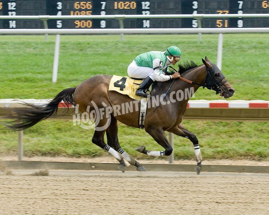 City Prospect winning at Delaware Park on 7/20/09
