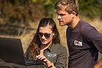 African Lion (Panthera leo) biologists, Xia Stevens and Milan Vinks, looking at images to identify lioness, Busanga Plains, Kafue National Park, Zambia