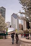 Millennium Park Photo Gallery