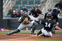 Hickory Crawdads catcher Tyler Sanchez (9) prepares to put the tag on Zach Fish (24) of the Kannapolis Intimidators as home plate umpire Matt Carlyon looks on at Kannapolis Intimidators Stadium on April 8, 2016 in Kannapolis, North Carolina.  The Crawdads defeated the Intimidators 8-2.  (Brian Westerholt/Four Seam Images)