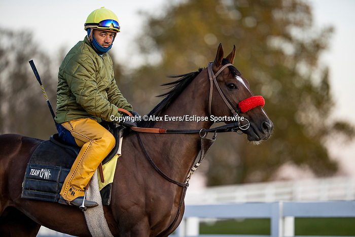 November 3, 2020: Fore Left at Keeneland Racetrack in Lexington, Kentucky on November 3, 2020. Alex Evers/Eclipse Sportswire/Breeders Cup