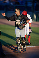 Batavia Muckdogs catcher Igor Baez (29) signals to the defense during a game against the Auburn Doubledays on June 15, 2018 at Falcon Park in Auburn, New York.  Auburn defeated Batavia 5-1.  (Mike Janes/Four Seam Images)
