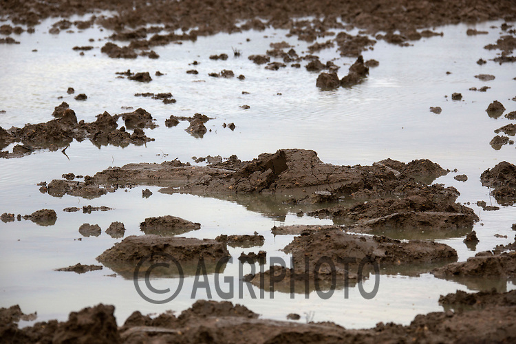 24.12.2012 Lincolnshire: Ploughed Farmland after Sugar Beet Standing in flood water in December 2012.©Tim Scrivener Photographer 07850 303986