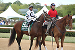 HOT SPRINGS, AR - APRIL 14: Combatant #9, with jockey Ricardo Santana, Jr. aboard before the running of the Arkansas Derby at Oaklawn Park on April 14, 2018 in Hot Springs, Arkansas. (Photo by Justin Manning/Eclipse Sportswire/Getty Images)