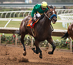 DEL MAR, CA: July 24: #7 Campaign with jockey Rafael Bejarano roll to victory in the Grade III Cougar II Handicap at Del Mar Thoroughbred Club on July 24, 2019 in Del Mar, California (Photo by Chris Crestik/Eclipse Sportswire)
