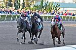 13 February 2010:  Munnings with jockey Javier castellano wins the Gulfstream Park Sprint Chanpionship Stakes Grade 2 at Gulfstream Park in Hallandale Beach, FL.