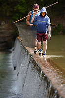 Braydon Mulanax, 15, (right) and his father, Larry Mulanax, both of Springdale, walk Friday, July 30, 2021, along the spillway at Riverside Park in West Fork while catching minnows. The pair were collecting bait to fish in the West Fork of the White River. Visit nwaonline.com/210731Daily/ for today's photo gallery.<br /> (NWA Democrat-Gazette/Andy Shupe)