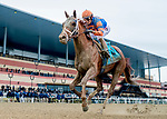 OZONE PARK, NY - APRIL 07: Vino Rosso (KY) #9, ridden by jockey John Velazquez, wins the Wood Memorial Stakes on Wood Memorial Stakes Day at Aqueduct Race Track on April 7, 2018 in Ozone Park, New York. (Photo by Scott Serio/Eclipse Sportswire/Getty Images)