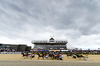 10th November 2020; Christchurch, New Zealand;  Mossman wins race 6, the MITRE 10 MOBILE PACE during the NZ Trotting Cup at Addington Raceway, Christchurch, New Zealand