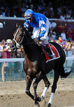 09 September 05: Pyro (no. 1), ridden by John Velazquez and trained by Saeed bin Suroor, wins the 30th running of the grade 1 Forego Stakes for three year olds and upward at Saratoga Race Track in Saratoga Springs, New York.