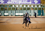 October 29, 2015:   Isotherm, trained by George Weaver and owned by Matthew Schera, exercises in preparation for the Breeders' Cup Juvenile Turf at Keeneland Race Track in Lexington, Kentucky. Alex Evers/ESW/CSM