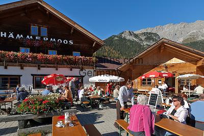 Austria, Tyrol, Upper Leutasch, Almenparadies Gaistal, Haemmermoosalm | Oesterreich, Tirol, Oberleutasch, Almenparadies Gaistal, Haemmermoosalm