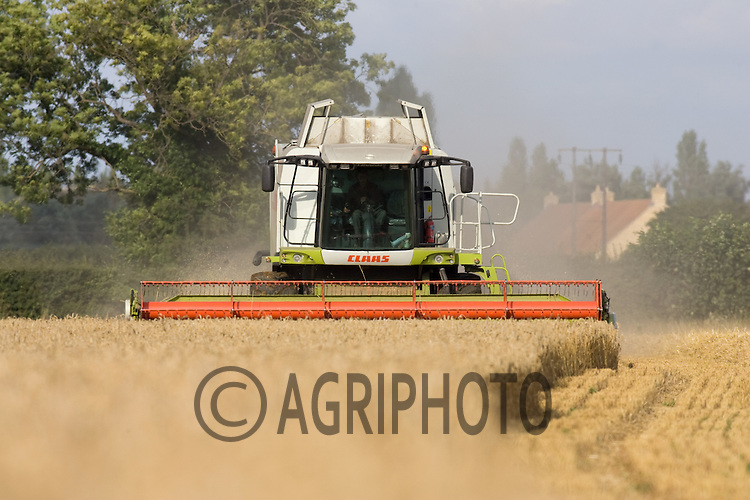 Harvesting Barley In Lincolnshire