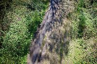 the Bois de Wallers-Arenberg cobbles<br /> <br /> 2014 Paris - Roubaix reconnaissance