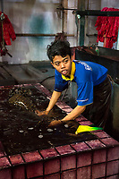 Yogyakarta, Java, Indonesia.  Batik Workshop.  Rinsing Batik Fabrik after Dying.
