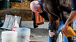 January 23, 2020:Trainer Richard Mandella checks out Omaha Beach as he gets a bath after galloping during preparations for the Pegasus World Cup Invitational at Gulfstream Park Race Track in Hallandale Beach, Florida. Scott Serio/Eclipse Sportswire/CSM