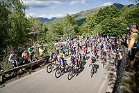 grupetto up the final climb of the day; the Alpe di Mera (1560m)<br /> <br /> 104th Giro d'Italia 2021 (2.UWT)<br /> Stage 19 from Abbiategrasso to Alpe di Mera (Valsesia)(176km)<br /> <br /> ©kramon