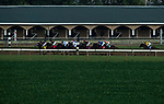 Horses and jockeys compete in the Runhappy Ellis Park Derby's 10th race for a $200,000 purse at Ellis Park in Henderson, Ky., Sunday afternoon, Aug. 9, 2020. The race is a qualifier for the upcoming Sept. 5, 2020, Kentucky Derby, with 85 points (50-20-10-5) up for grabs.