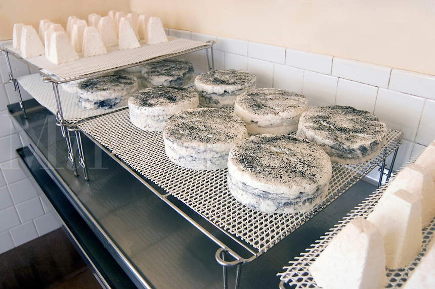 Various types of goat milk cheese are produced at Juiniper Grove Farm, a goat cheese operation in Redmond, Oregon