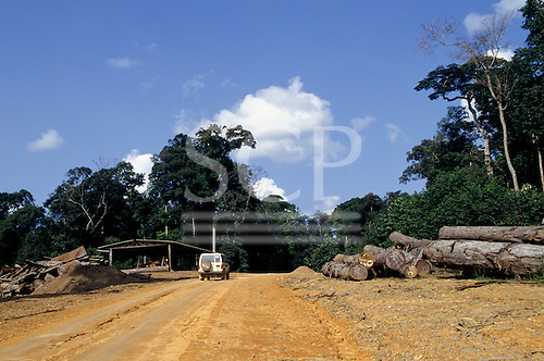 La Gongue, Gabon. Cut tree trunks at the side of the road at a sawmill.
