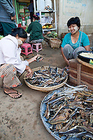 Myanmar, Burma. Customer Selecting Dried Fish in Bagan Market.  The women are wearing thanaka paste, a cosmetic sunscreen, on their faces.