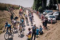 peloton on pavé sector #14<br /> <br /> Stage 9: Arras Citadelle > Roubaix (154km)<br /> <br /> 105th Tour de France 2018<br /> ©kramon