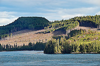 Clearcutting along the Campell River, British Colombia, Canada