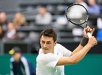 11-02-13, Tennis, Rotterdam, ABNAMROWTT, Bernard Tomic, Grigor Dimitrov