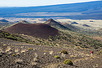 A hiker on Mauna Kea Summit Trail, with cinder cones (or pu'u) and the slope of Mauna Loa in the background, Big Island of Hawai'i.