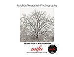 """Michael Knapstein's image """"Blizzard Oak"""" won Second Place (Silver) in the Nature/Seasons category of the 2017 Moscow International Fotographic Awards (MIFA)."""