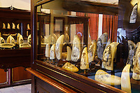 Scrimshaw-Museum in Peter Café Sport in Horta auf der Insel Faial, Azoren, Portugal
