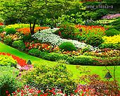 Tom Mackie, FLOWERS, photos, The Sunken Garden, Butchart Gardens, Victoria, Vancouver Island, British Columbia, Canada, GBTM070312-3,#F# Garten, jardín