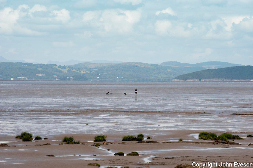 Walking dogs over the sand at Morecambe Bay, Lancashire.