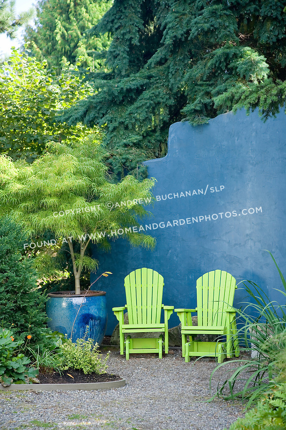 At the back of a residential organic garden north of Seattle, a sitting area is furnished with two chartreuse green Adirondack chairs, a lace leaf Japanese maple in an azure-glazed pot, and backed by a roughly 9 foot tall matching azure blue wall, reminiscent of a Caribbean patio, that provides color at the back of the garden as well as privacy from a storage area behind.
