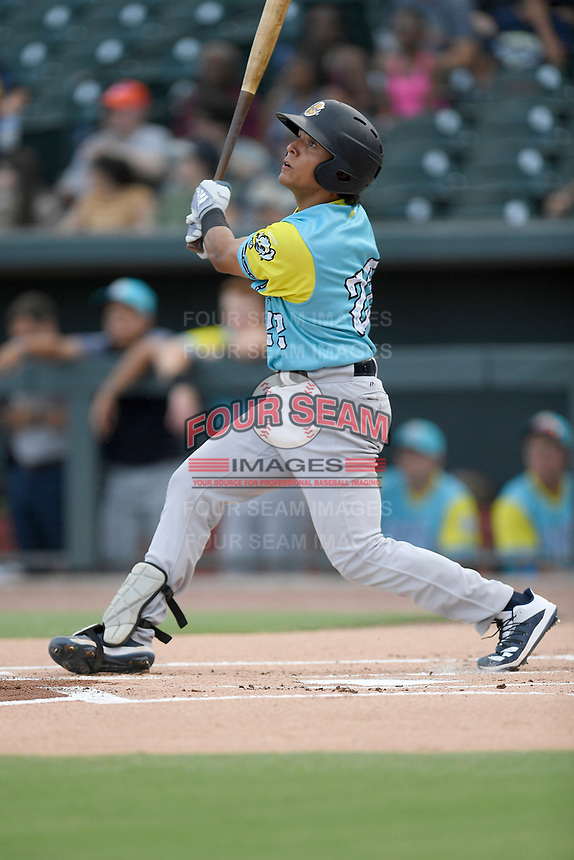 Catcher Anthony Seigler (22) of the Charleston RiverDogs, playing as the Perros Santos de Charleston, bats in a game against the Columbia Fireflies on Friday, July 12, 2019 at Segra Park in Columbia, South Carolina. The RiverDogs won, 4-3, in 10 innings. (Tom Priddy/Four Seam Images)