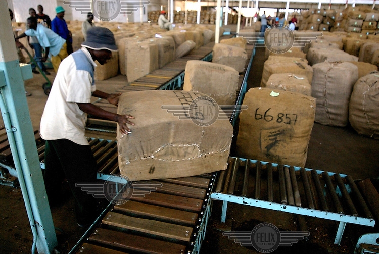 Tobacco auction centre in Blantyre. Tobacco is Malawi's largest industry and currently accounts for nearly 80 percent of the nation's export earnings. It is however in danger of causing serious damage to the country's environment through deforestation..